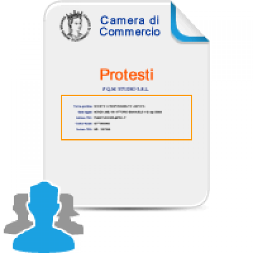 Camera di commercio accertaweb pratiche e documenti online for Visura e lavori meglio
